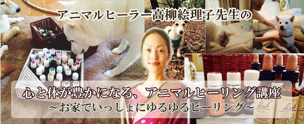 アニマルヒーラー高柳絵理子先生のアニマルヒーリング講座
